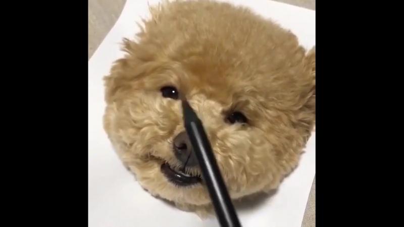 Ещё одна реалистичная собачка