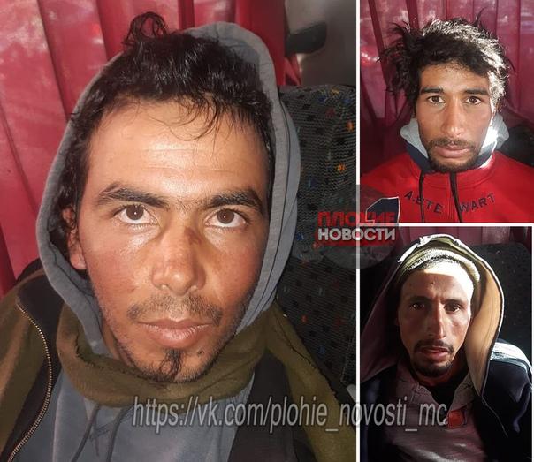 В Марокко двух туристок-автостопщиц обезглавили местные экстремисты. Убийство сняли на видео с лозунгами