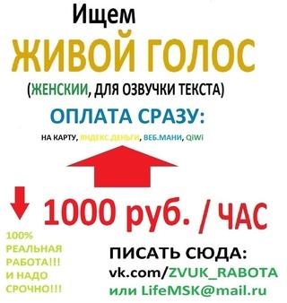 Газета онлайн работа для вас новосибирск вакансии законность форекс