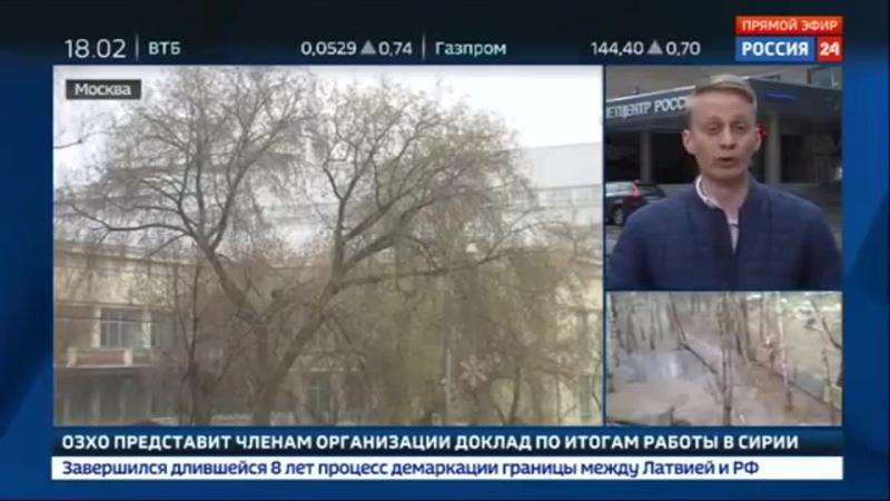 Россия 24 - Шторм в Москве: дерево упало на людей - Россия 24
