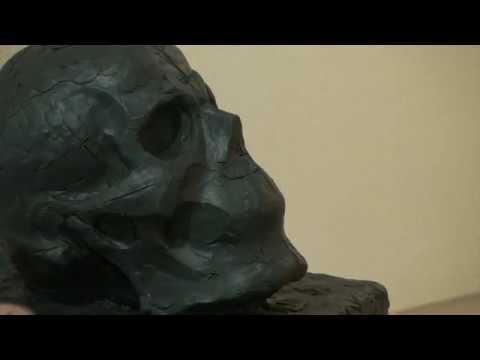 Уроки скульптуры и рисунка лепка черепа человека детализация часть 3
