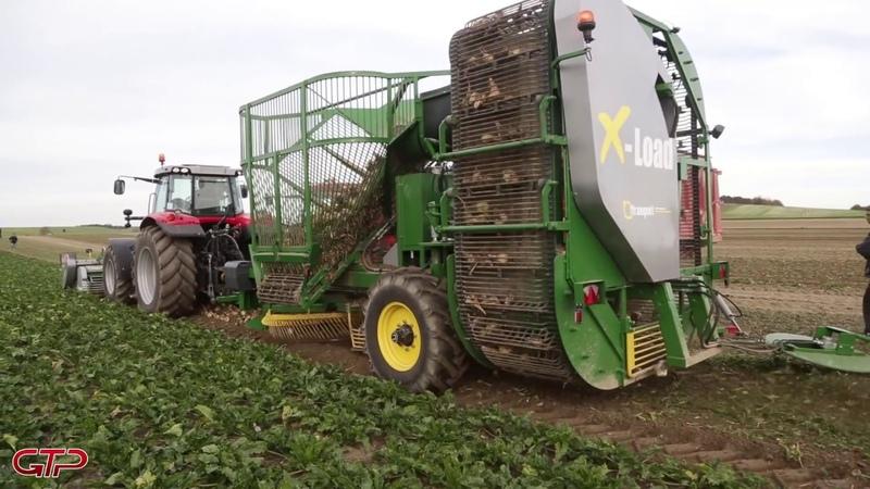 Beet Harvester   FRANQUET X-Beet   Massey Ferguson 7720