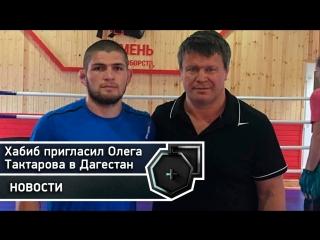 Ответ Тактарова Хабибу о приглашении в Дагестан   FightSpace