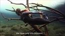 Cave Freediving Cenote Car Wash - Tulum - Amancay Freediving