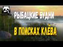 РУССКАЯ РЫБАЛКА 4 - РЫБАЦКИЕ БУДНИ, В ПОИСКАХ КЛЁВА!