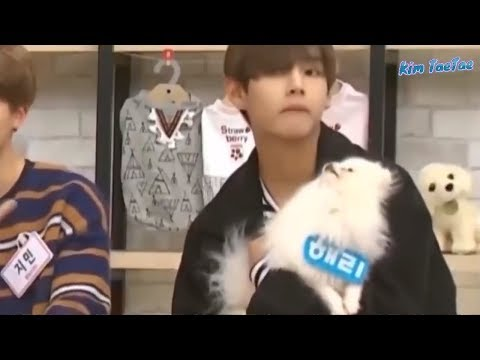 BTS Cute and Funny Moments 2 (Try Not To Laugh Challenge)