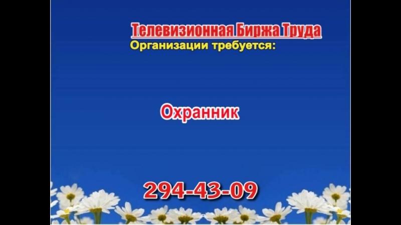 20 августа 17 40 Работа в Нижнем Новгороде Телевизионная Биржа Труда