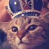 Никита Король