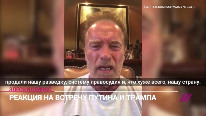 «Вы стояли там, как олух» Шварценеггер раскритиковал Трампа на пресс-конференции с Путиным (расширенная версия, рус. субтитры)