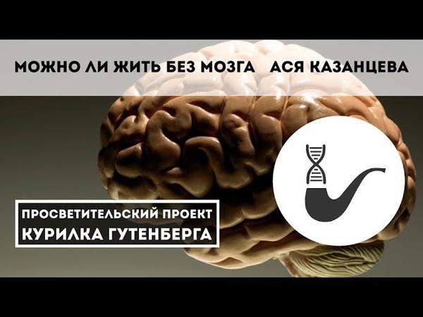 Можно ли жить без мозга? – Ася Казанцева