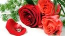 Андрей Обидин Нежное обаяние любви красивая музыка