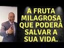 A FRUTA MILAGROSA QUE PREVINE DOENÇAS DE DIVERSOS TIPOS - LAIR RIBEIRO