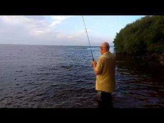 Рыбалка Под Волгоградом 2017