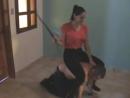 LatinBeautiesInHighHeels 19.3 GB ClipsLatinBeautiesInHighHeels - Krystall - Indoor Ponyboy Training.wmv HQCOLLECT.mp4