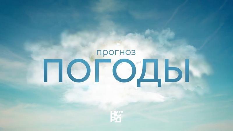 Прогноз погоды НОРД ТВ - НОВОДВИНСК