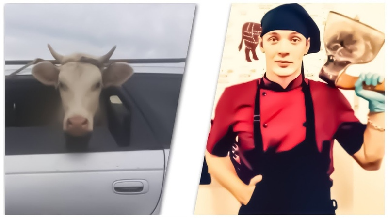 🔪 Покупатель Купил домой пол быка 🐂 90кг Мясо 🥩 ЗАТАРИЛСЯ 👍