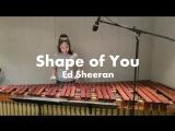 Кореянка исполняет на маримбе песню Shape of You - Ed sheeran
