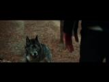 Arash feat Helena - Dooset Daram (Filatov Karas Remix)