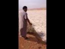 Песчаная река в Ираке / Sand River in Iraq