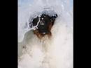 Marla on the ocean