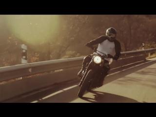 Malinois vs Motorcycle Triumph Tiger 885- Rec&Bros