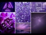 Ультрафиолет и Почти Лиловый