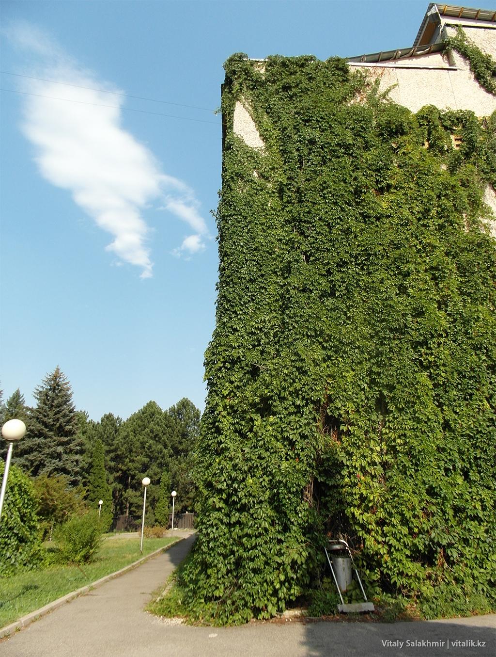 Административное здание Ботанического сада Алматы