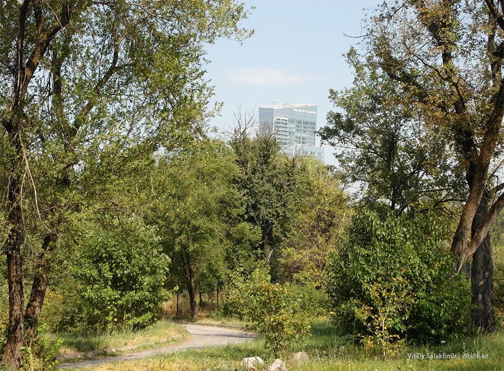 Вид на Есентай из Ботанического сада 2018
