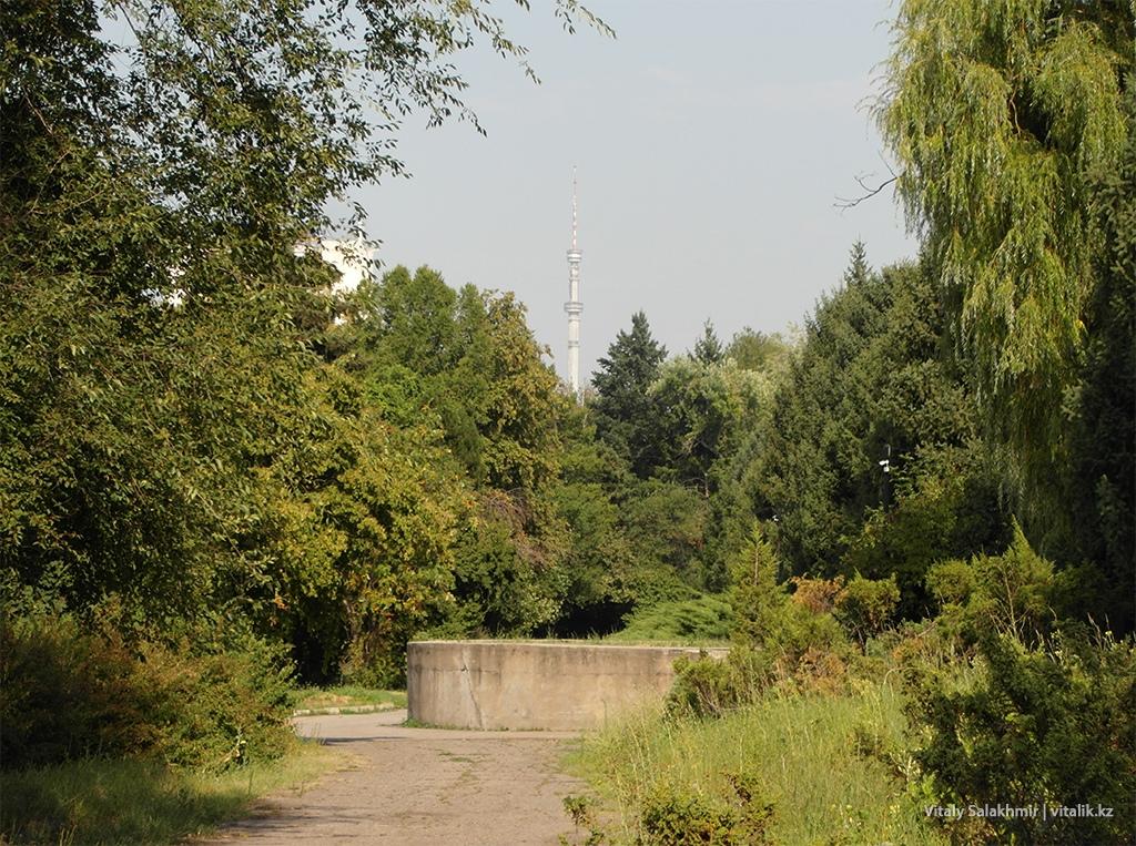 Вид на Кок-Тобе из Ботанического сада Алматы 2018