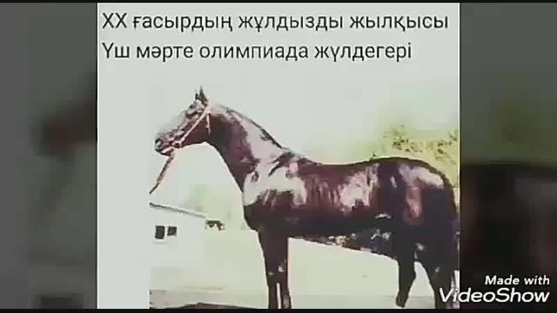 АТАҚТЫ БАЙГЕ АТТАР