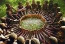 Мудрость детей африканского племени