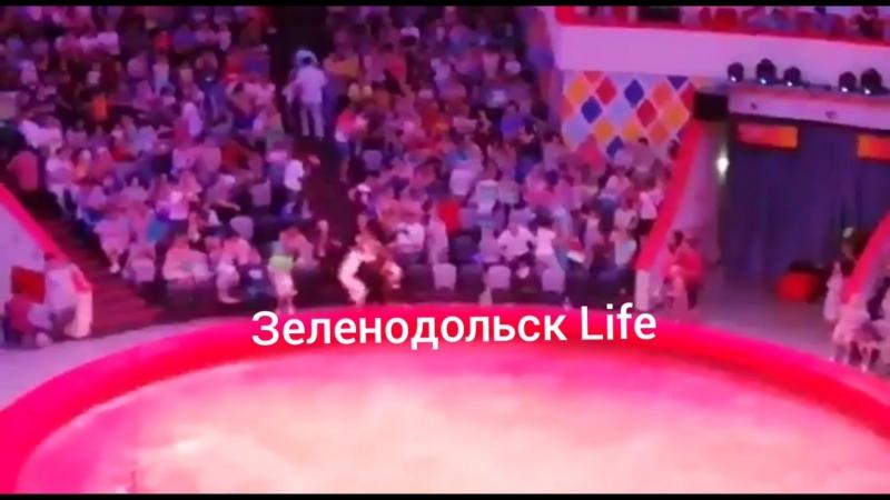 В Казани страус напал на зрителей, сидевших в первых рядах. 4D-представление по-русски.