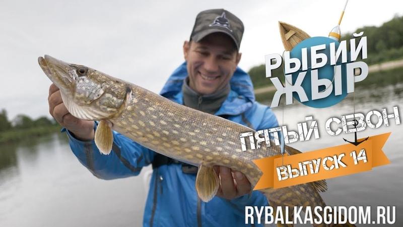 Рыбалка в Беларуси. Река Припять. Рыбий жЫр 5 сезон 14 выпуск.