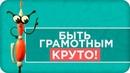Как УСПЕШНО сдать ОГЭ Мой БЕСПЛАТЫЙ курс Онлайн школа русского языка