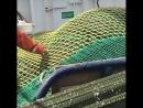 Рыбаки вЧерном море сняли навидео водяной смерч.
