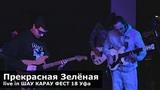 Прекрасная Зелёная live in ШАУ КАРАУ ФЕСТ 18 Уфа