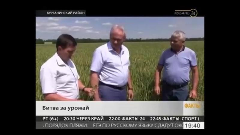 Смотр культуры земледелия в Курганинском районе