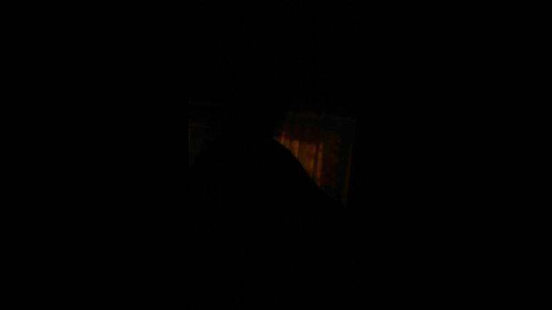 ночная трансуха яровой и белый