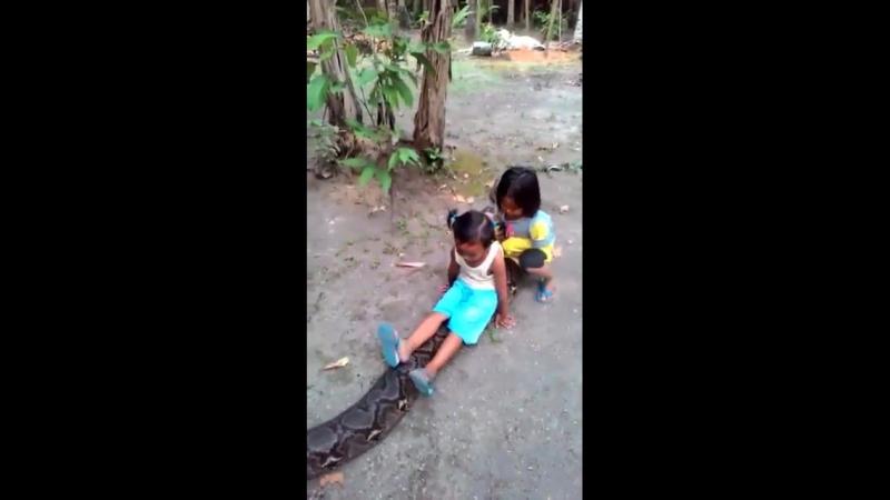 Детские забавы в африке