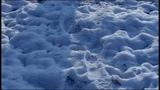 Daniel Barenboim Debussy - Des pas sur la neige (Pr
