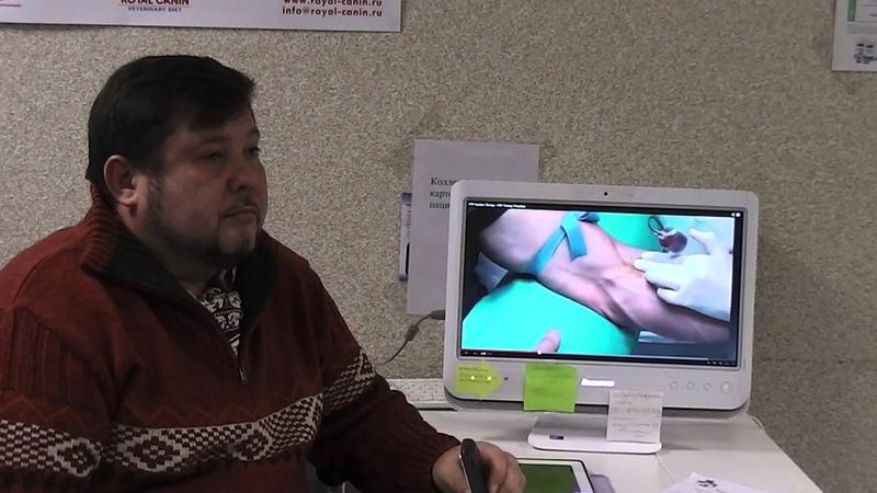Рациональное использование методик пластической хирургии
