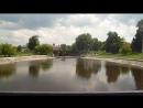 Новозыбков, Лебединое озеро.