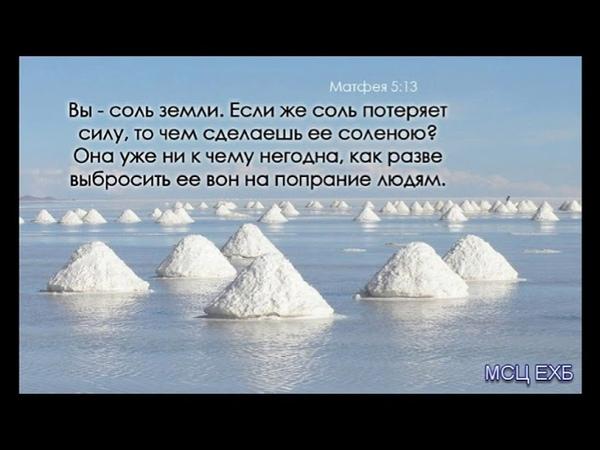 Вы соль земли Д Самарин МСЦ ЕХБ