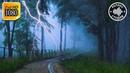 Сильный шум дождя с грозой и громом. Дождь 3 часа для релаксации