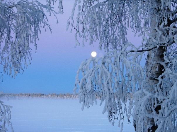 17 февраля в народном календаре - Никола Студеный.