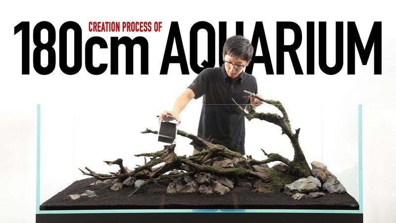 [ADAview] 180cm水槽の制作工程 -Creation Process of 180cm Aquarium