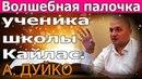 Волшебная палочка ученика школы Кайлас. Андрей Дуйко