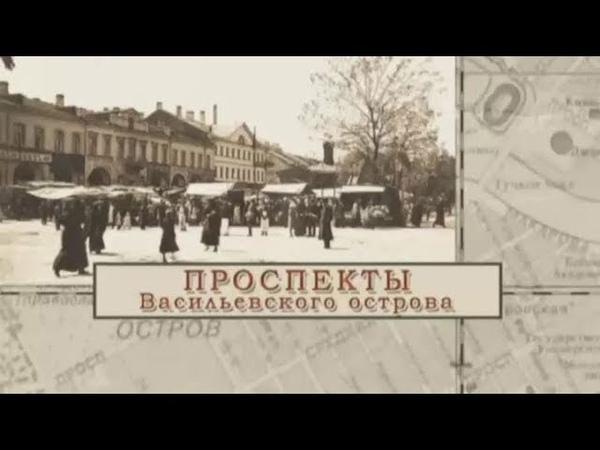 Малые родины большого Петербурга. Проспекты Васильевского острова