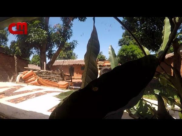 Vídeo Mostra Tiroteio Que Vitimou Paraquedista Português Na República Centro-Africana