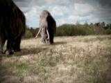 Охота на мамонта. Мона Лиза геоархеологии